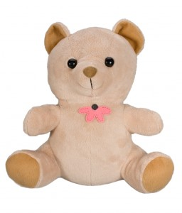 Teddy Bear with 1 Year Battery DVR